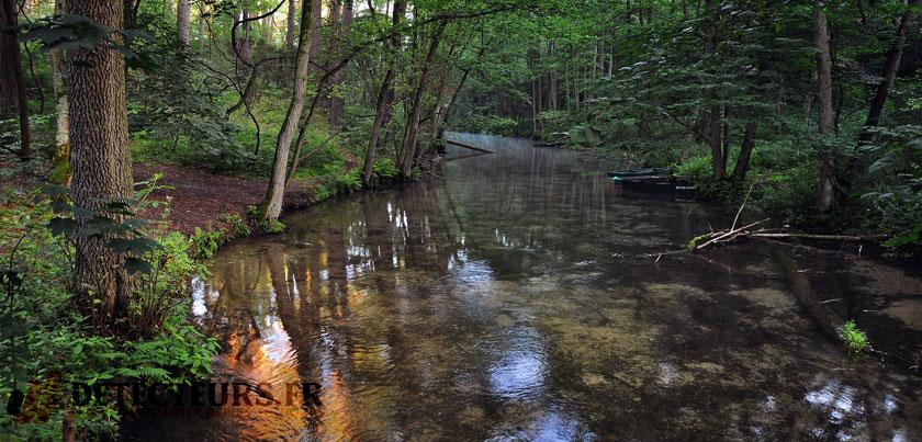 Les rivières en forêt sont de bons endroits pour détecter les métaux