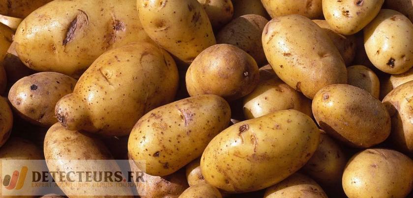 Grenade découverte dans un sac de pommes de terre